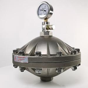 脉冲阻尼器 隔膜式脉冲阻尼器 膜片式脉冲阻尼器 不锈
